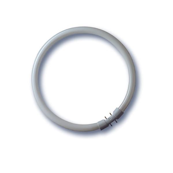 LUMILUX T5 FC 22W/840/2Gx13
