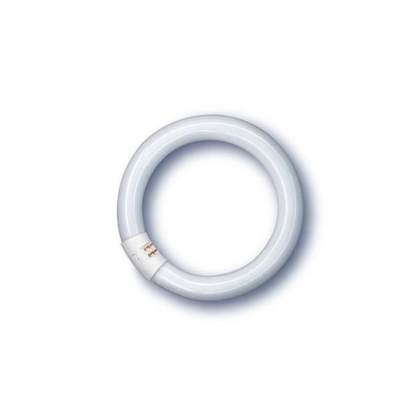 LUMILIX T9C 40W/865/G10Q
